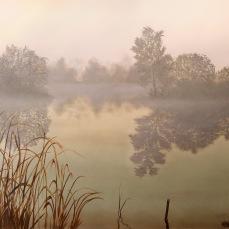 'Quiete' - Acrilici e olio su tela 100x90 - 2017